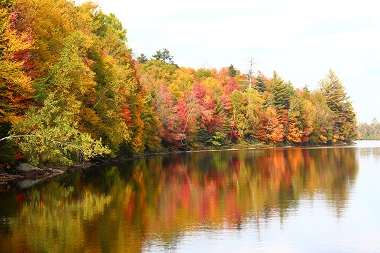 fall colors reflecting off the water