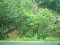 Old Plank Road roadcut - Coxsackie