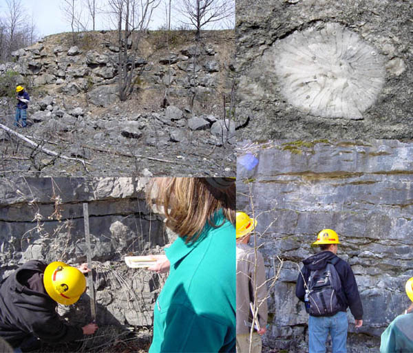 Features of geologic interest at the abandoned LeRoy Quarry