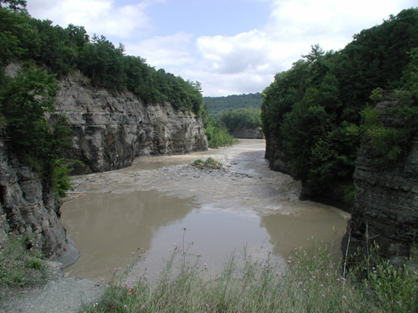 Genesee River in Gorge