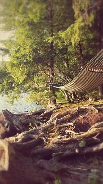 hammock on the shoreline