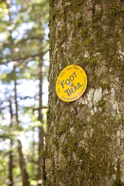 yellow foot trail marker