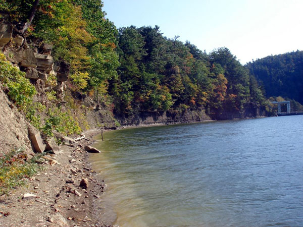 Rushford (Caneadea) Dam Park - Rushford Formation