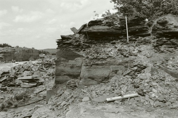 Upper-flow-regime sand flat deposits are dominant at Sheetz Quarry