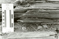 Closeup of flat heterolithic bedding within Heterolithic-Bedded Facies