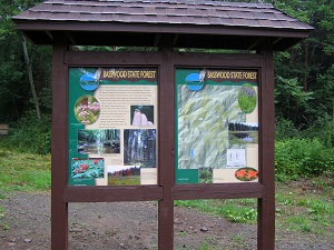 The kiosk with map and photos of the Forest