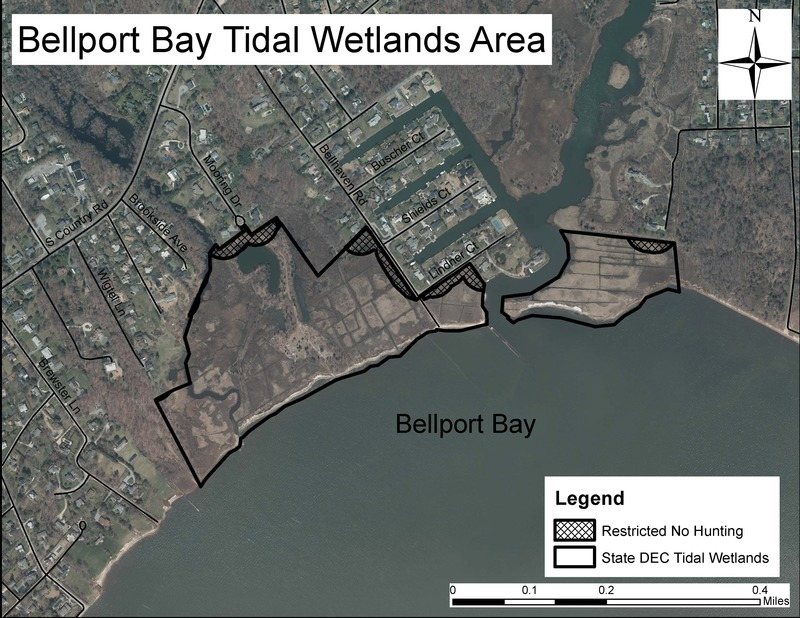 Bellport Bay State Tidal Wetlands