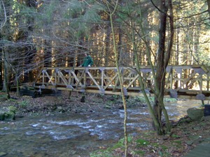 bridge in Bucktooth State Forest