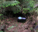 Bear resistant canister stored on the ground.