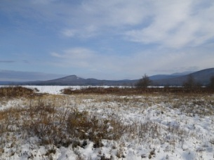 Wintertime at Chazy Highlands WMA