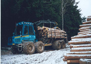 Logs being stacked for transport