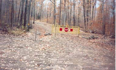 Trail at Coyle Hill State Forest