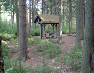 Shelter and picnic area at Dobbins State Forest