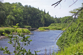 Picture of East Branch of Fish Creek