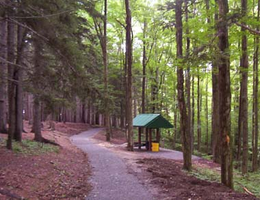 shelter and trail at day use area
