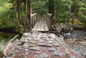 Bridge on trail