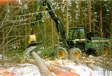 Timber harvester clearing damaged trees