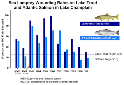 Graph outlining success of Sea Lamprey control mechanisms from 2003-2010