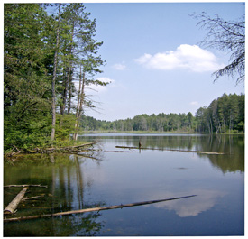 A view of the pond in the Morgan Hill State Forest