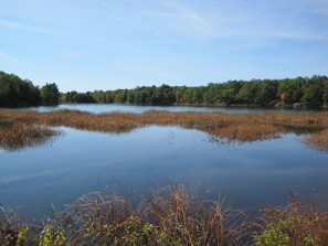 photo of Mud Lake