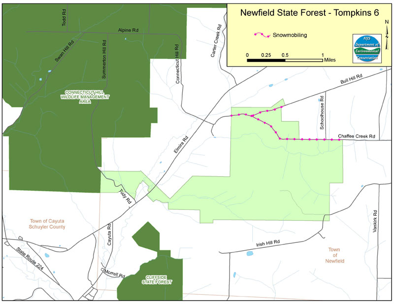 Newfield State Forest Map