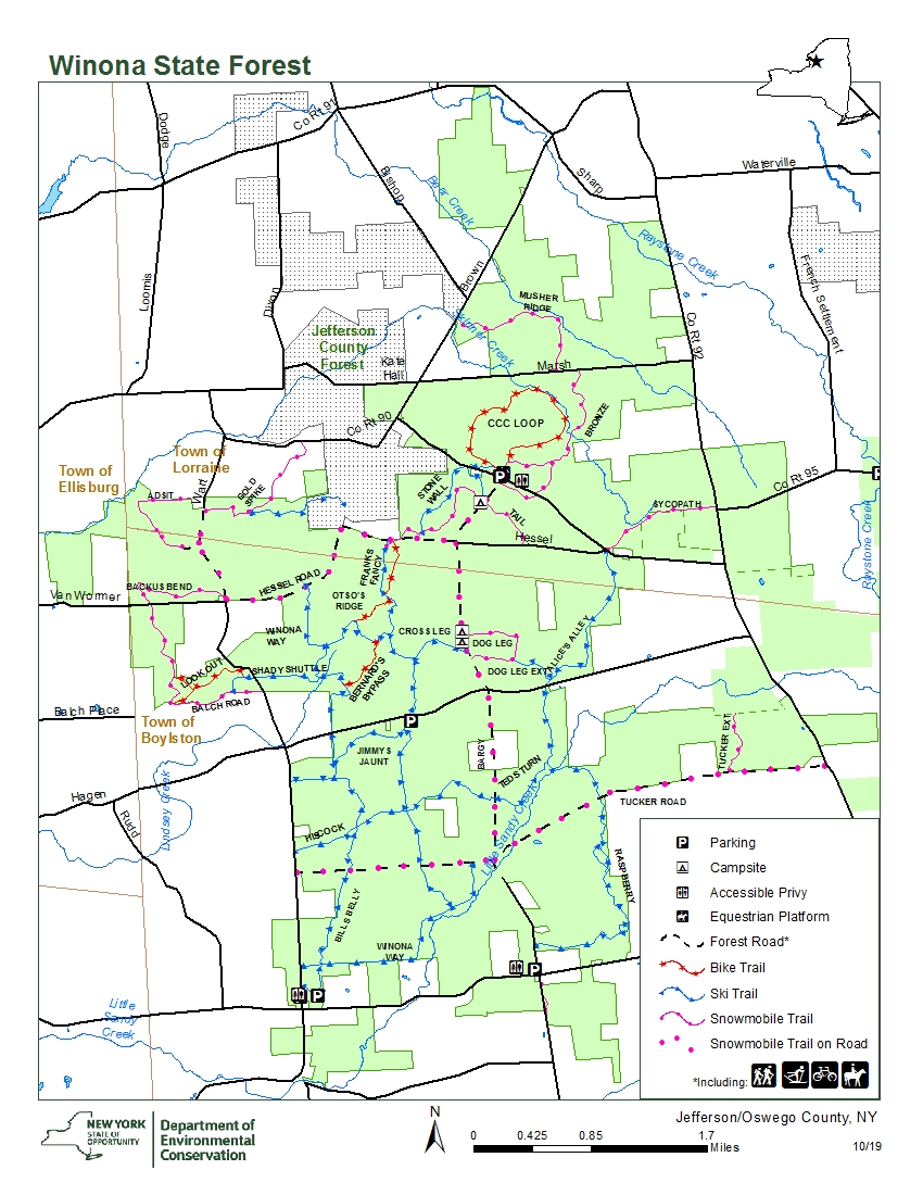 A map of Winona State Forest, Oswego #2