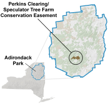 Map depicting the location of the Perkins Clearing - Speculator Tree Farm Conservation Easement Lands in the Adirondack Park