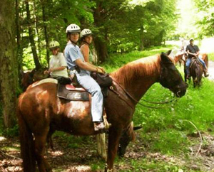 Horseback riding is a popular activity on this state forest unit.