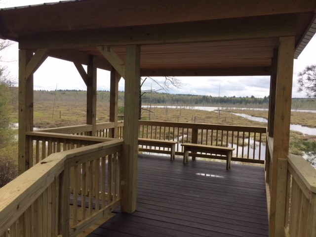 accessible viewing platform overlooks Round Pond wetlands