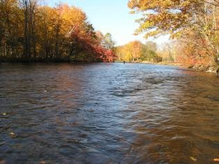 Picture of the Salmon River.