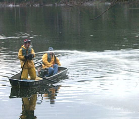 Technicians applying rotenone to a water from a boat.