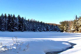 Tri County Pond during winter in Robinson Hollow State Forest