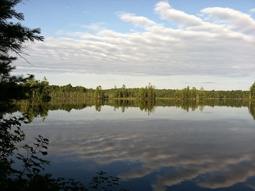round lake with trees and clouds and a blue sky