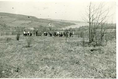 Lost Nation Civilian Conservation Corps crew planting trees