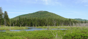 View of Grass Pond and Catamount