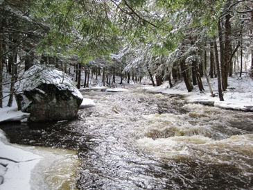 Plumb Brook in Winter