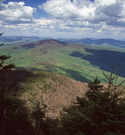 View across high peaks in the Catskills on a summer day.