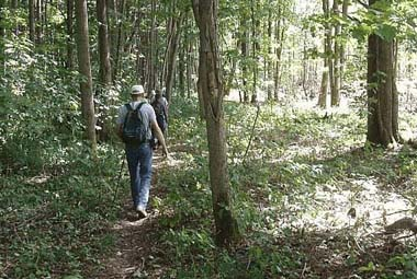 Hikers enjoy trails through Swift Hill State Forest