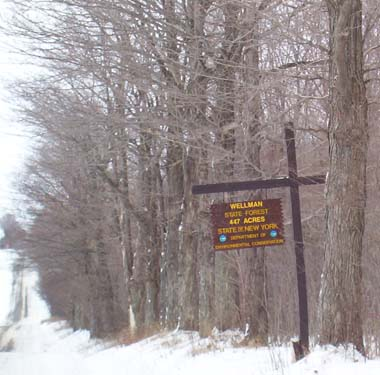 Photo of sign for Wellman State Forest