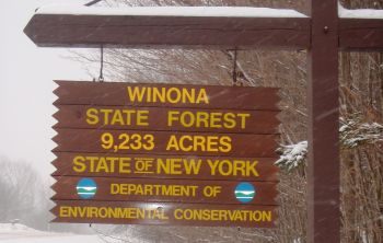 Sign Stating, Winona State Forest 9,233 Acres, State of New York Department of Environmental Conservation