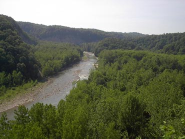 scenic of ZOAR Valley showing trees and river