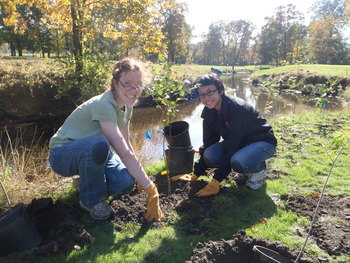 two volunteers planting trees on the banks of a creek on a sunny day