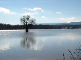 spring flooding of Wallkill creek, a Hudson River Tributary