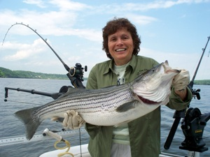 A Hudson River angler with a striped bass