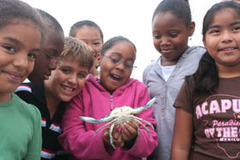School children gather around a young girl holding a crab