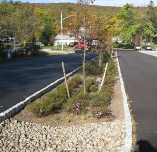 Vegetated swale in the Village of Greenwood Lake