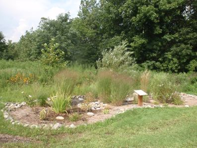 Rain garden at Stanley Still Park