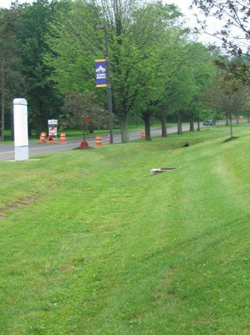 Dry swale at SUNY Albany in Albany County