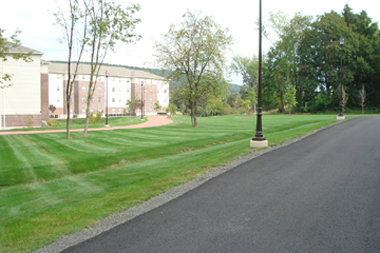 Dry swale at Dominican College in Rockland County
