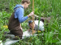 two scientists in a marsh with a measuring device